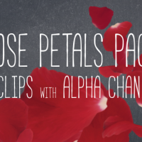 Videohive – Rose Petals Pack 19386698 – Free Download