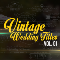 Videohive – Vintage Wedding Titles vol. 01 10979823 – Free Download