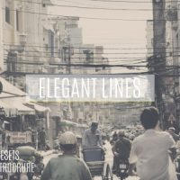 VIDEOHIVE ELEGANT LINES SLIDESHOW FREE DOWNLOAD