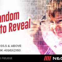 VIDEOHIVE RANDOM PHOTO REVEAL FREE DOWNLOAD