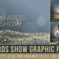 VIDEOHIVE AWARD SHOW GRAPHIC PACK FREE DOWNLOAD