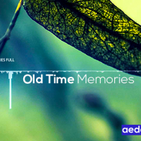 Audiojungle Old Time Memories 674799