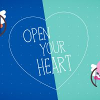 VIDEOHIVE FUNNY VALENTINES CARD