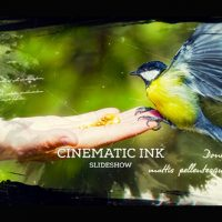 VIDEOHIVE CINEMATIC INK SLIDESHOW FREE DOWNLOAD
