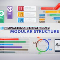 VIDEOHIVE BUSINESS INFOGRAPHICS BUNDLE