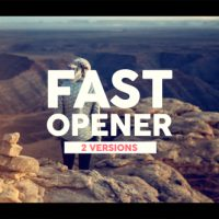 VIDEOHIVE FAST OPENER 20027138