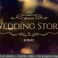 VIDEOHIVE WEDDING PACK 19832552 FREE DOWNLOAD