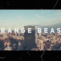 VIDEOHIVE STRANGE BEASTS FREE DOWNLOAD