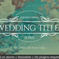 VIDEOHIVE WEDDING TITLES 19995952