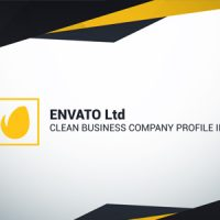 VIDEOHIVE CLEAN BUSINESS COMPANY PROFILE II