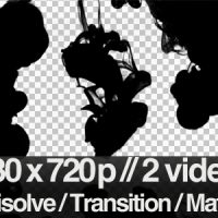 VIDEOHIVE 2 INK FLOWING IN WATER TRANSITION / MATTE / MASK