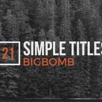 VIDEOHIVE SIMPLE TITLES 20137446 FREE DOWNLOAD