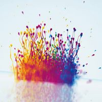 VIDEOHIVE PARTICLES SPLASH LOGO REVEAL