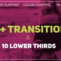 VIDEOHIVE TRANSITIONS 20562424 FREE DOWNLOAD