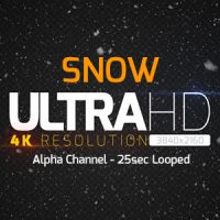 VIDEOHIVE SNOW 18775557 Free After Effects Template