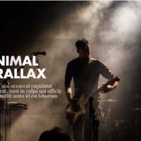 Motionarray Minimal – Parallax Presentation 50718