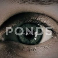 Pond5 – Eye Logo After Effects Templates 82271006