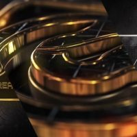 VIDEOHIVE DIAMONDS GOLD & SILVER LOGO