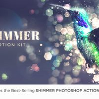 VIDEOHIVE SHIMMER MOTION KIT – ADD-ON