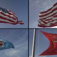 VIDEOHIVE 3D FLAG LOOP MAKER FREE AFTER EFFECTS TEMPLATE