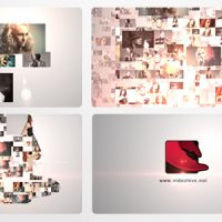 VIDEOHIVE CORPORATE LOGO FORMATION