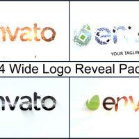 VIDEOHIVE WIDE LOGO REVEAL PACK