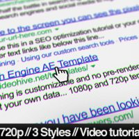 VIDEOHIVE INTERNET SEARCH ENGINE SCREEN CLOSE-UP