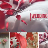 VIDEOHIVE WEDDING INTRO 14584906