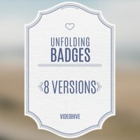 VIDEOHIVE WEDDING BADGES