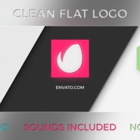 VIDEOHIVE CLEAN FLAT LOGO 3 IN 1