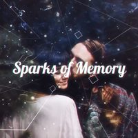 VIDEOHIVE SPARKS OF MEMORY