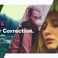 VIDEOHIVE COLOR CORRECTION & COLOR GRADING PRESETS FOR PREMIERE PRO