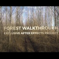 VIDEOHIVE FOREST WALKTHROUGH