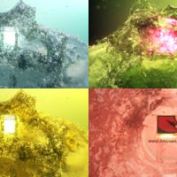 VIDEOHIVE SURFACING LOGO FROM WATER