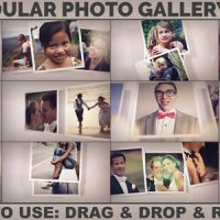 VIDEOHIVE MODULAR PHOTO GALLERY KIT