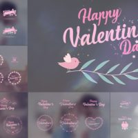 VIDEOHIVE VALENTINE'S DAY BADGE PACK