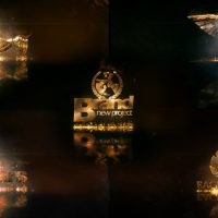 VIDEOHIVE HOT AND GOLD LOGO