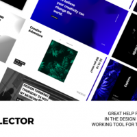 VIDEOHIVE PT. SELECTOR