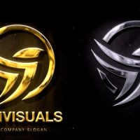 VIDEOHIVE SILVER & GOLD LOGO REVEAL 2