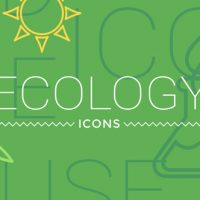 VIDEOHIVE ECOLOGY CONCEPT ICONS 19517644