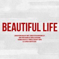 VIDEOHIVE BEAUTIFUL LIFE