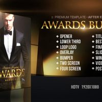 VIDEOHIVE AWARDS BUNDLE