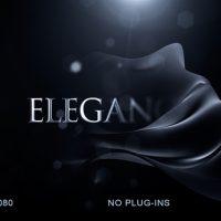 VIDEOHIVE ELEGANT LOGO REVEAL 22534577