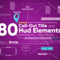VIDEOHIVE CALL OUTS 22196672