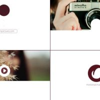 VIDEOHIVE WEBSITE PHOTO LOGO REVEAL