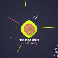 VIDEOHIVE FLAT LOGO INTRO 20655869