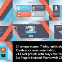 VIDEOHIVE CORPORATE PROFILE