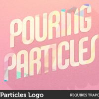 VIDEOHIVE POURING PARTICLES