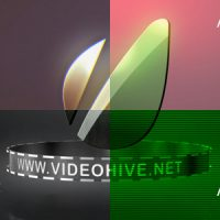 VIDEOHIVE LOGO STING 4 STYLES