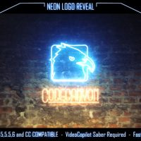 VIDEOHIVE NEON LOGO REVEAL 16184476